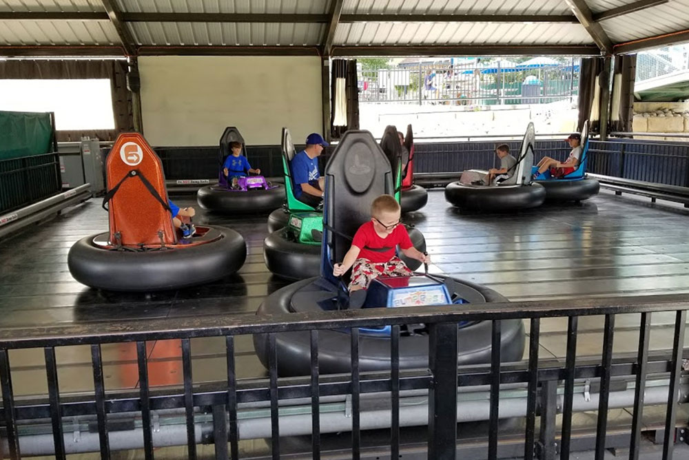 guests enjoying bumper cars